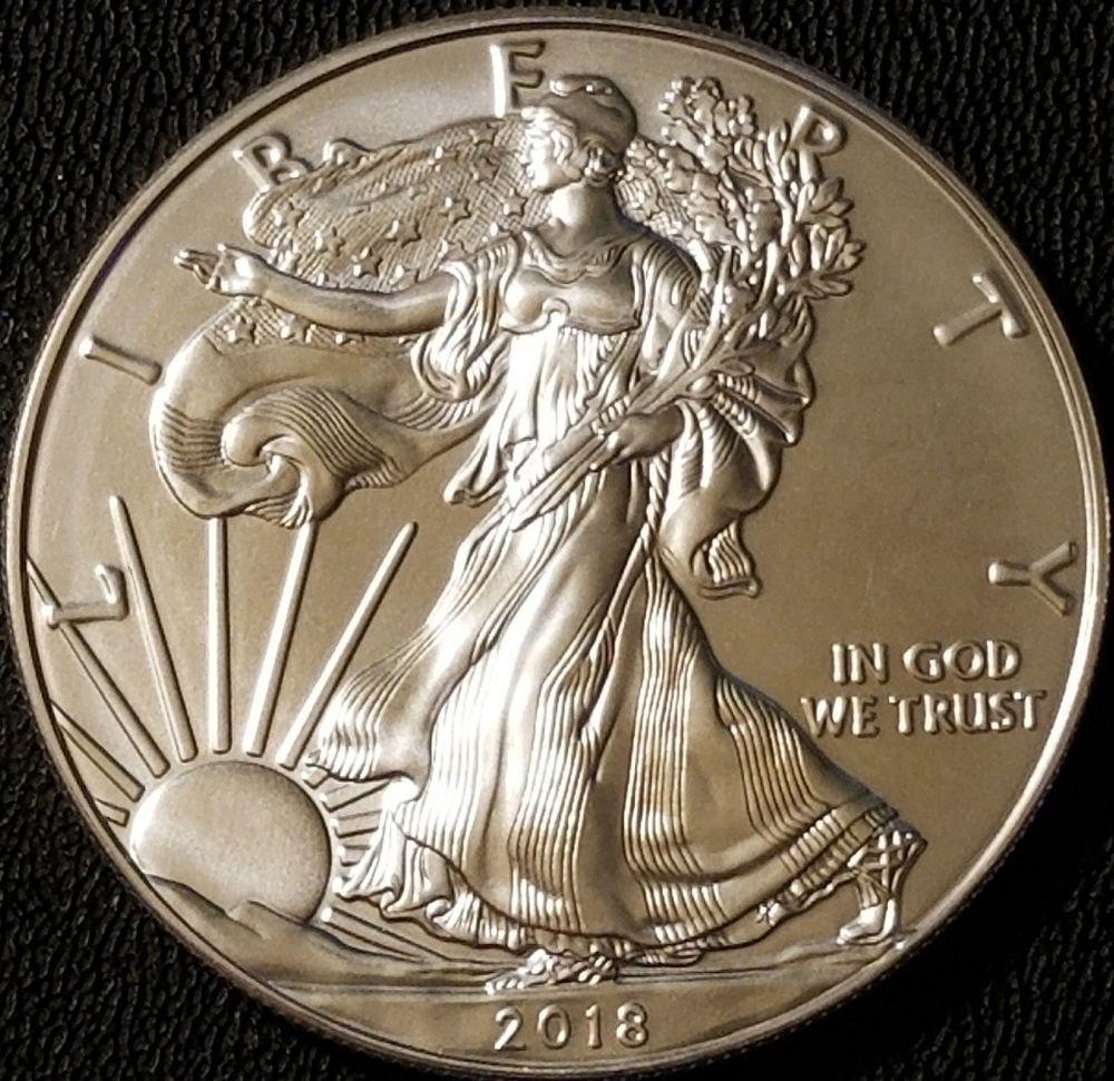 2018 Silver American Eagle 1oz Coin 999 Fine Silver Bullion Silver Bullion Silver Eagle Coins Coins