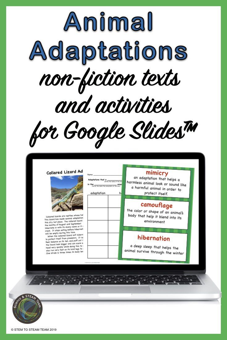 Animal Adaptations NonFiction Texts and Activities for