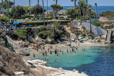 For a Day or a Weekend, Things to Do in La Jolla That You'll Never Forget: La Jolla Cove