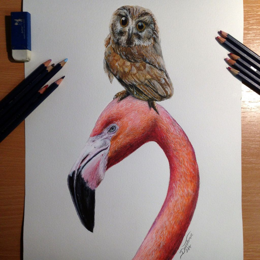 Best Friends Color Pencil Drawing By Atomiccircus On Deviantart Bird Drawings Color Pencil Sketch Color Pencil Drawing