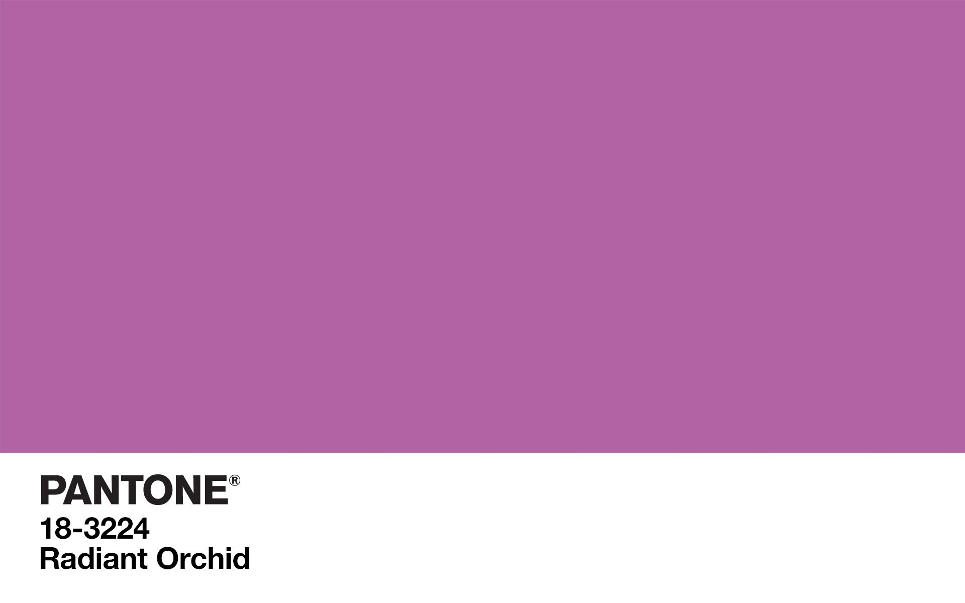 PANTONE 18-3224 Radiant Orchid (Color Of The Year, 2014