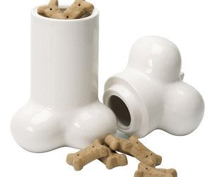 Cookie Jar...  for your pet's treats!