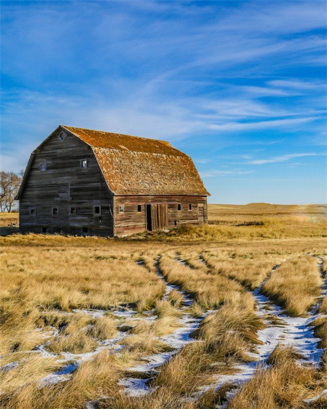 Remnants of snow at an old barn on the prairie, taken near Herbert, Sask. Photo by Tracy Miller.