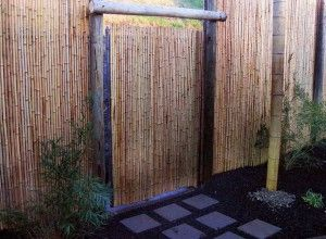 roll bamboo screening lowes - Google Search