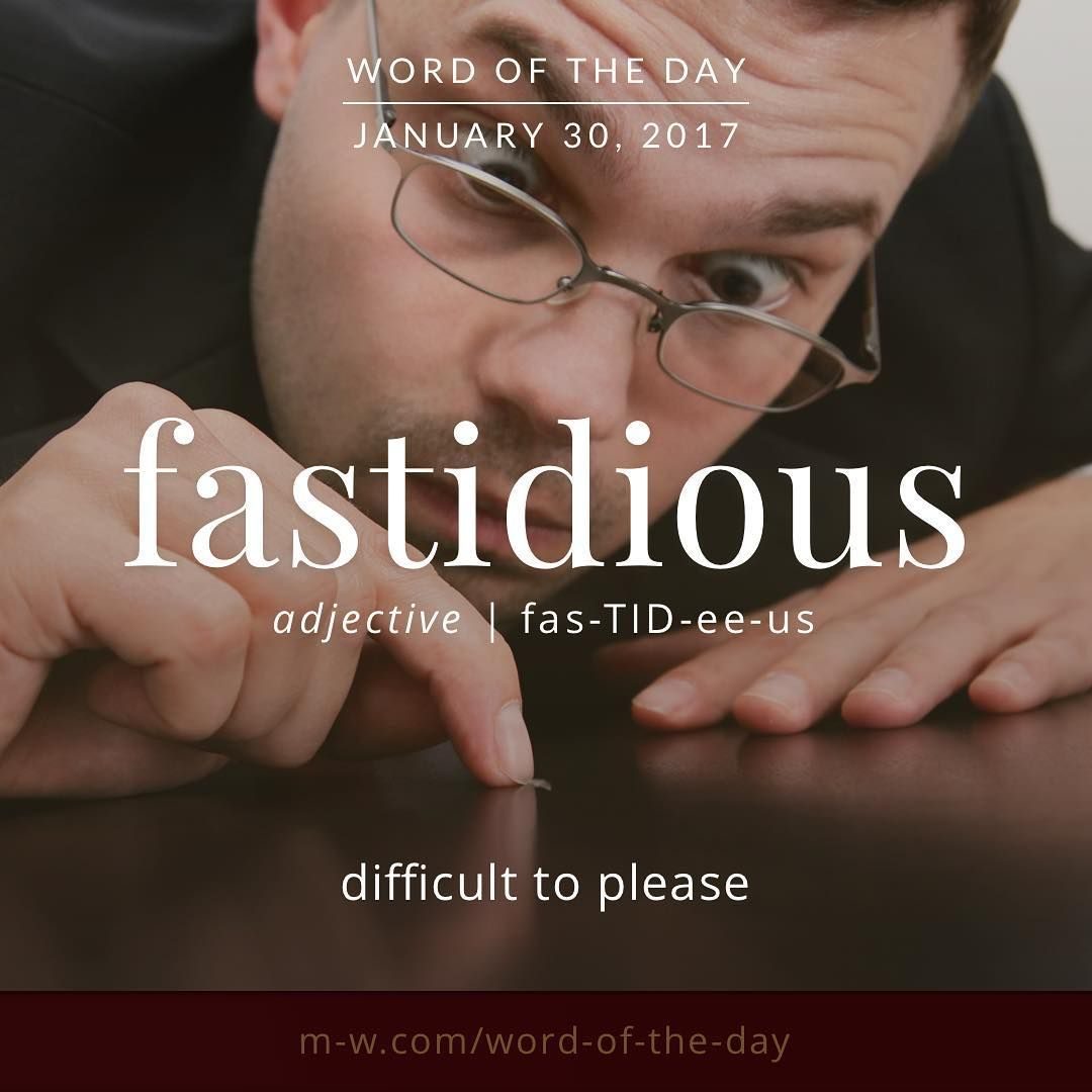 Fastidious (Latin Origin) Very Attentive To And Concerned About Accuracy  And Detail. Meticulous Also, Very Concerned About Matters Of Cleanliness