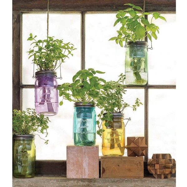 Superbe Modern Sprout Mason Jar Indoor Herb Garden ($20) ❤ Liked On Polyvore  Featuring Home