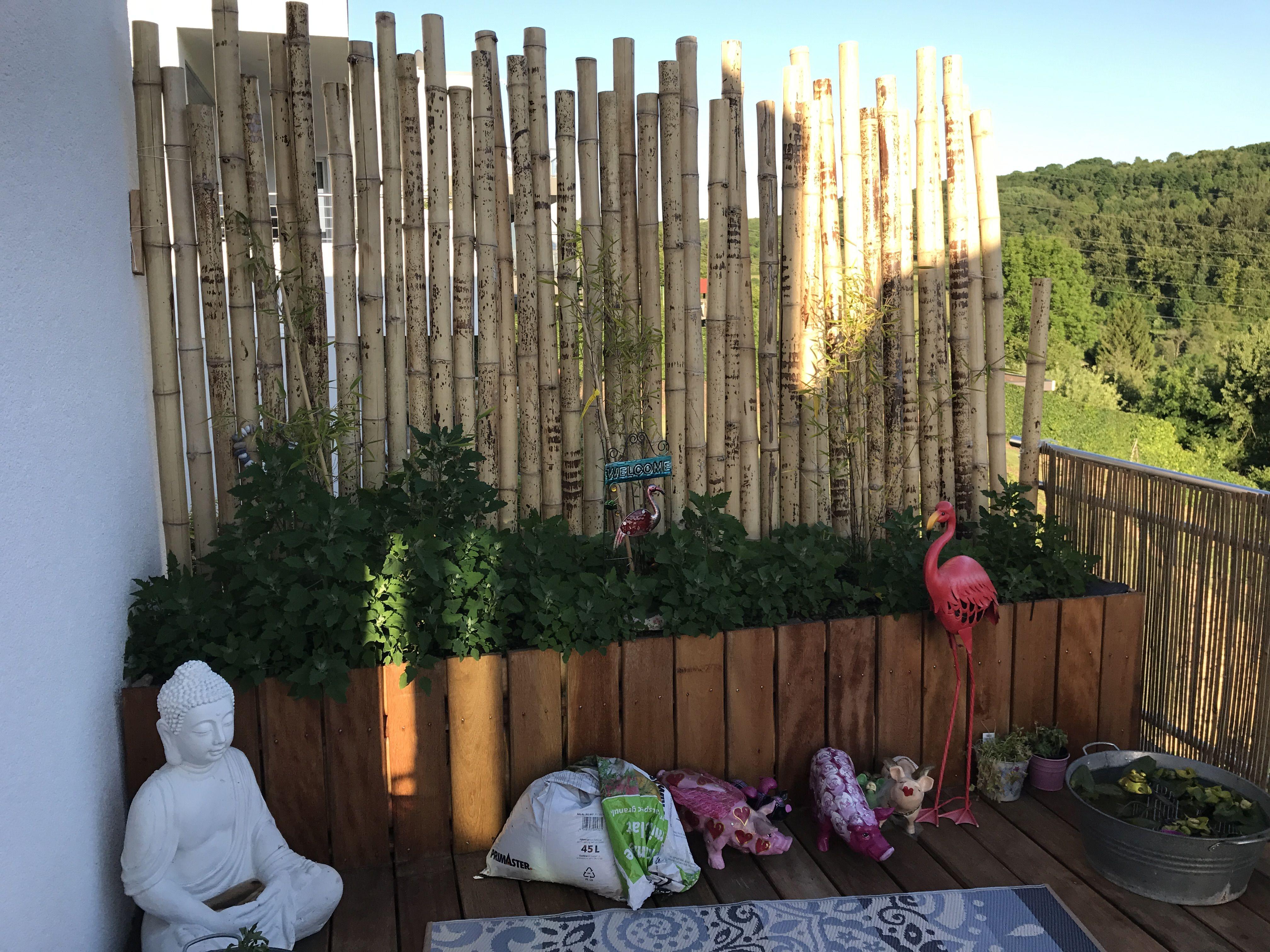 Sichtschutz aus Bambusstangen gefertigt. Holztrog mit Erde