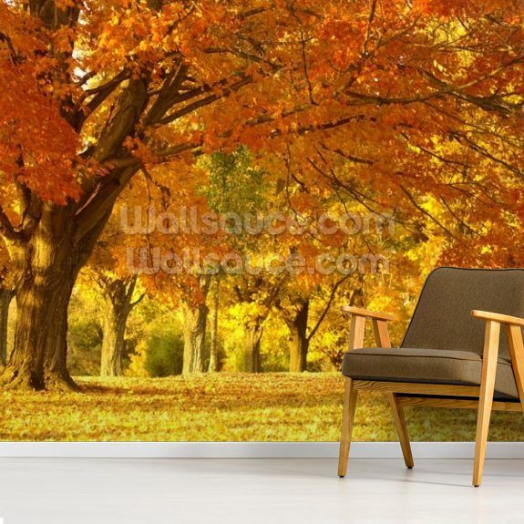 Orange Autumn Scene Wallpaper   Wallsauce US #autumnscenes