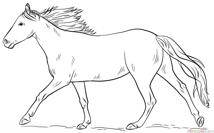 How To Draw A Running Horse Step By Step. Drawing Tutorials For Kids And  Beginners