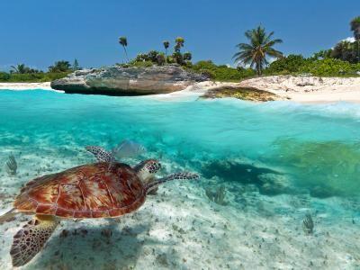 Auf nach Kreta! 4* All-Inclusive-Badeurlaub auf Kreta |Urlaubsheld.de
