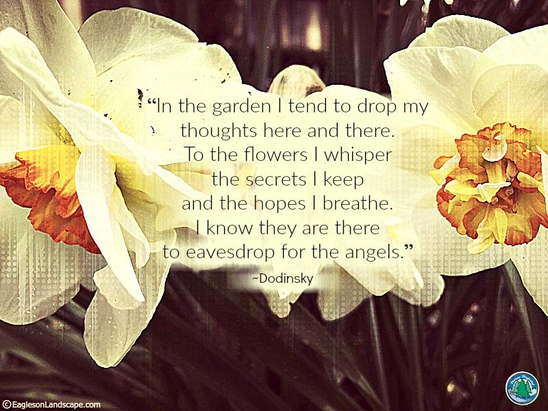 Flowering Wisdom   Gardening Quotes : http://eaglesonlandscape.com/flowering-wisdom-gardening-quotes-36/