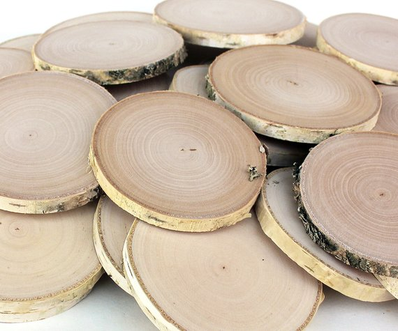 20 Birch 3 3 5 Wood Slices Rustic Tree Branch Slices For Craft Natural Wood Slices Birch Wood Wood Slices Wooden Slices Natural Wood
