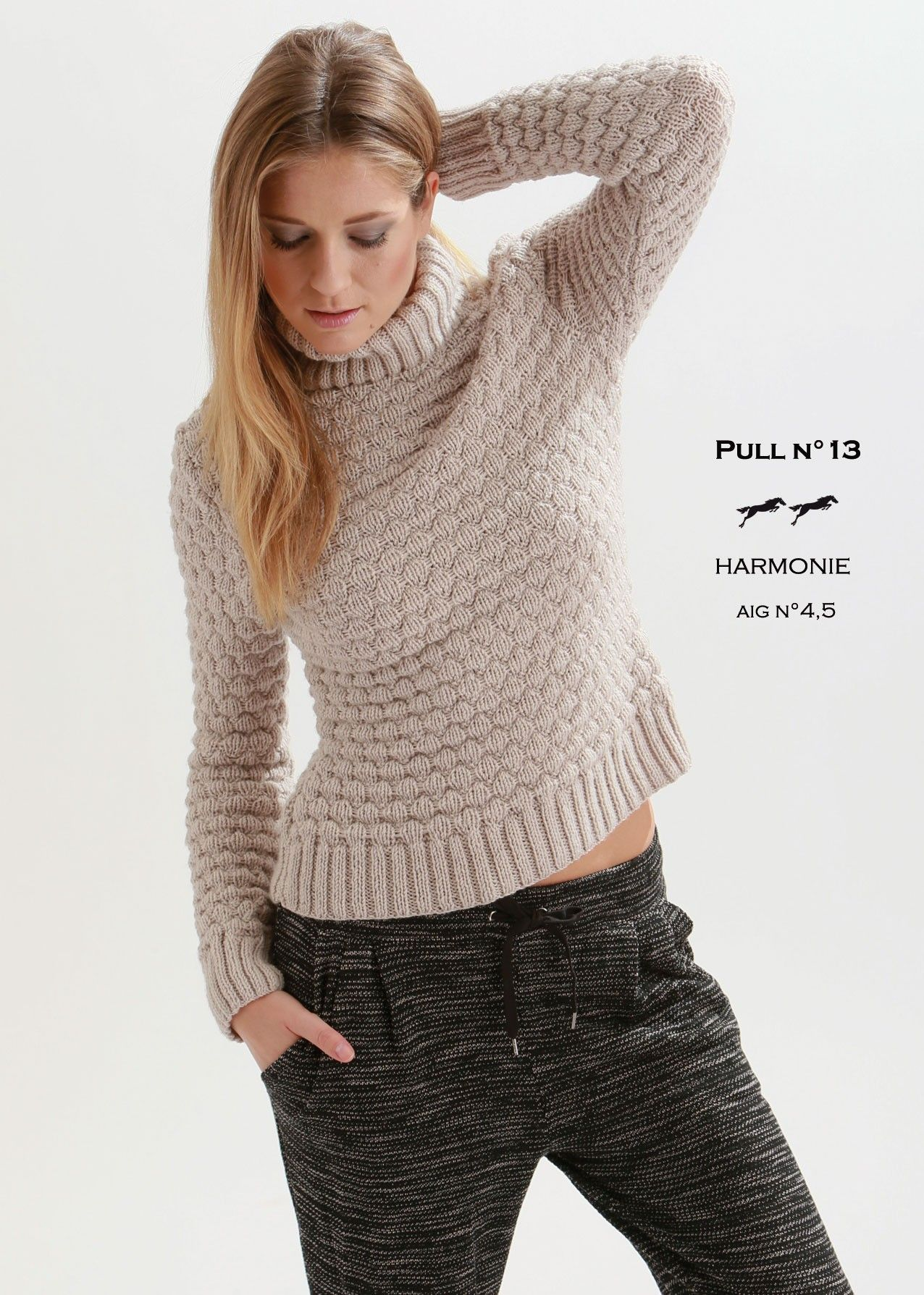 Modèle pull w037 patron tricot gratuit Cheval blanc