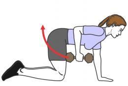 exercices pour les triceps femme