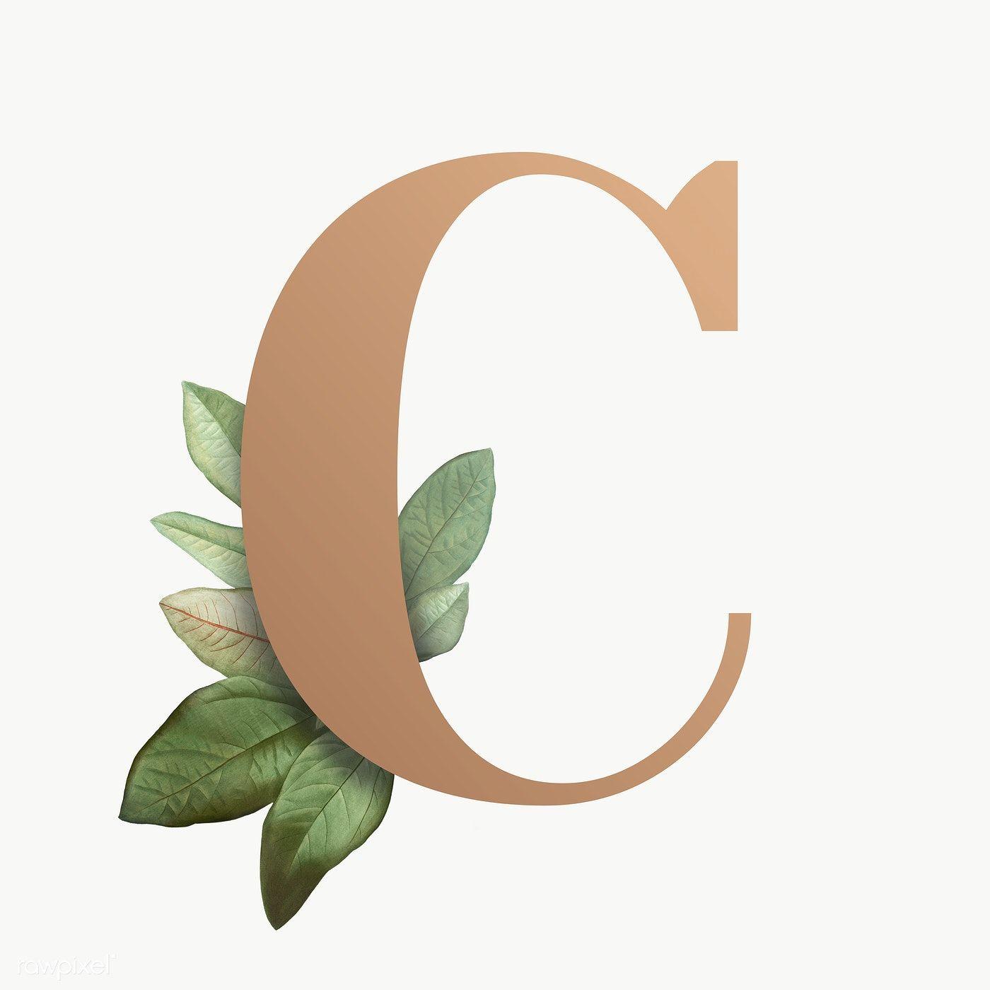 Botanical Capital Letter C Transparent Png Premium Image By Rawpixel Com Aum Letter C Lettering Letter H Design