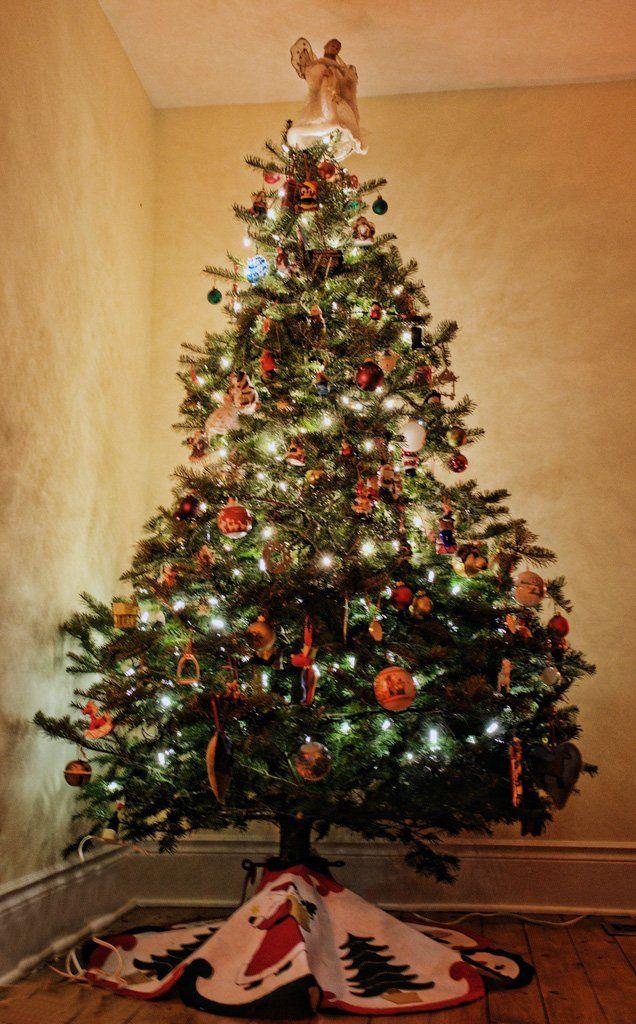 O Christmas Tree, O Christmas Tree! You\u0027re Way Too Big For My House