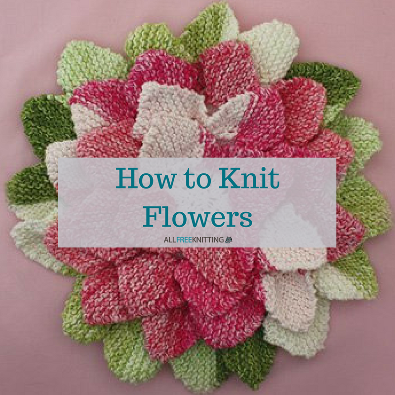How To Knit Flowers 39 Easy Knitting Patterns Knitted Flowers