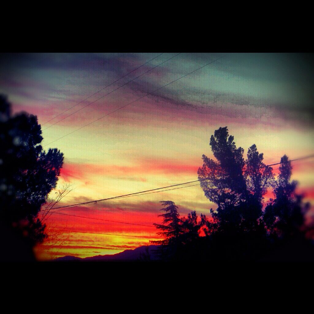 Night sky Apple Valley Ca. Photo art, Night skies, Photo