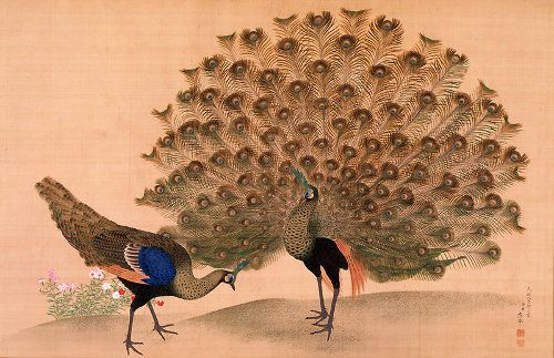 """""""Remember that the most beautiful things in the world are the most useless; peacocks and lilies, for instance."""" — John Ruskin"""