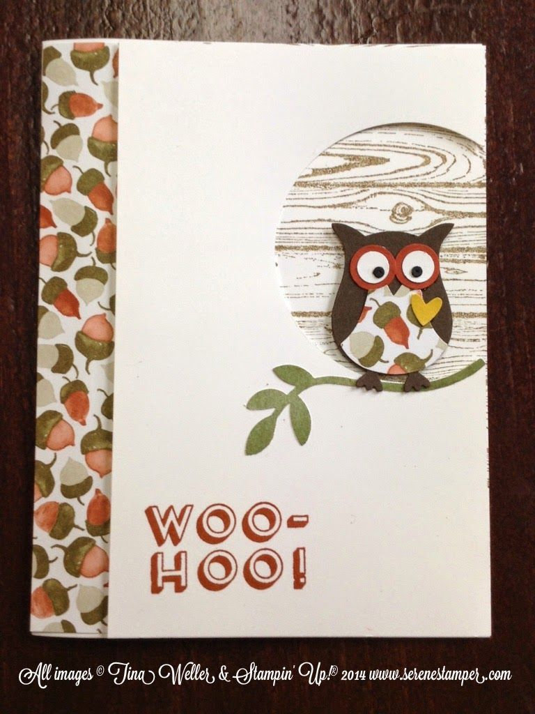 Branching Out Owl Card