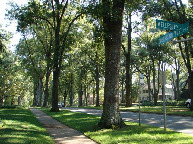 Image result for myers park charlotte