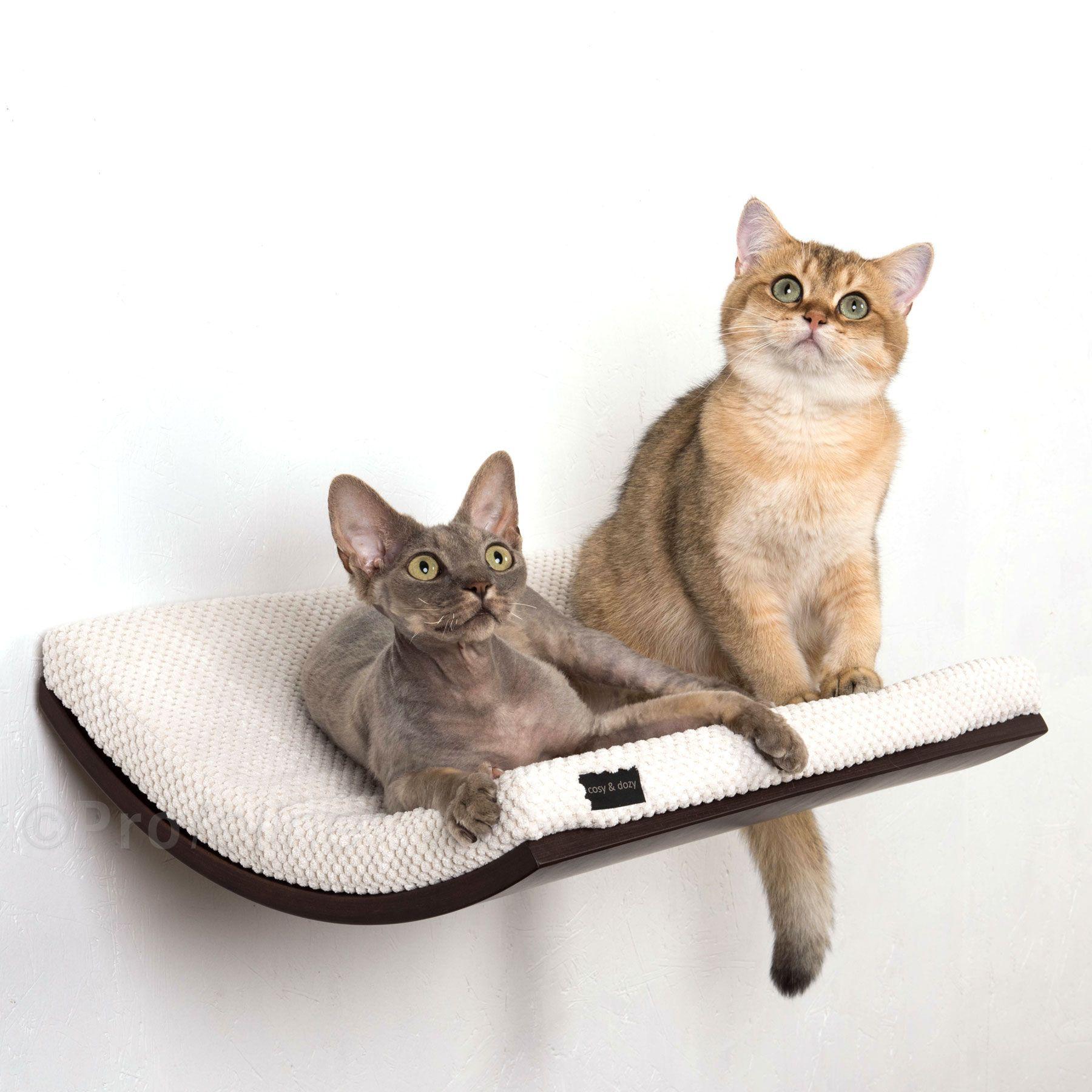 Edel geschwungene Wandliege von Cosy & Dozy mit kuscheliger Matratze. Die elegante Wandliege wird ihre Katze begeistern. Durch die gebogene Form ähnelt die Wandliege einer Mulde, in der sich ihre Katze besonders geborgen...