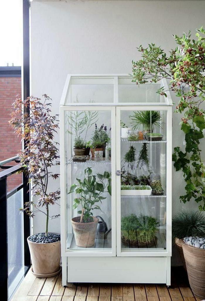 Vitrine Schrank Balkon Terrassengestaltung Balkonp In 2020 City Garden Indoor Garden Home And Garden