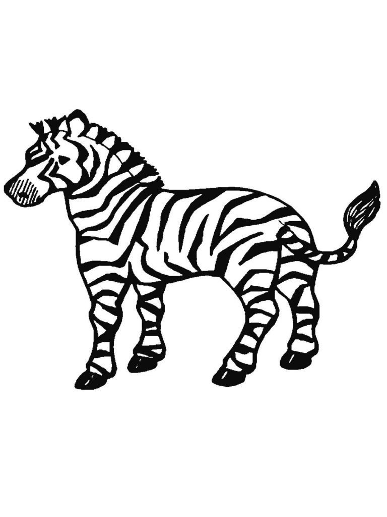 Free Printable Zebra Coloring Pages For Kids Zebra Coloring Pages Cute Coloring Pages Animal Coloring Pages