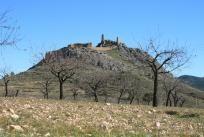 Buscador Castillos | Asociación española de amigos de los Castillos, Castillos de España, Castillos medievales