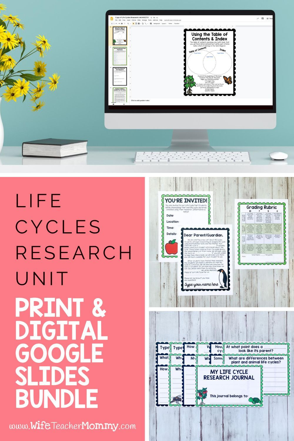 Ideas For A Life Cycles Unit Manual Guide