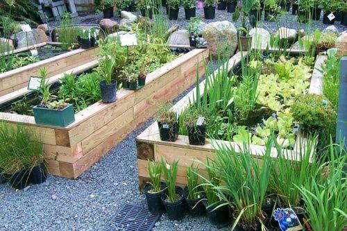 Home Garden Ideas Gardening Garden Container Gardening Water - Home-and-gardening-ideas