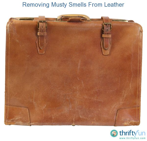Removing Musty Smells From Leather