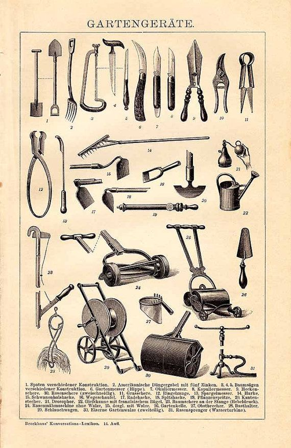 Original 1895 Antique Lithography Print Gardening Tools