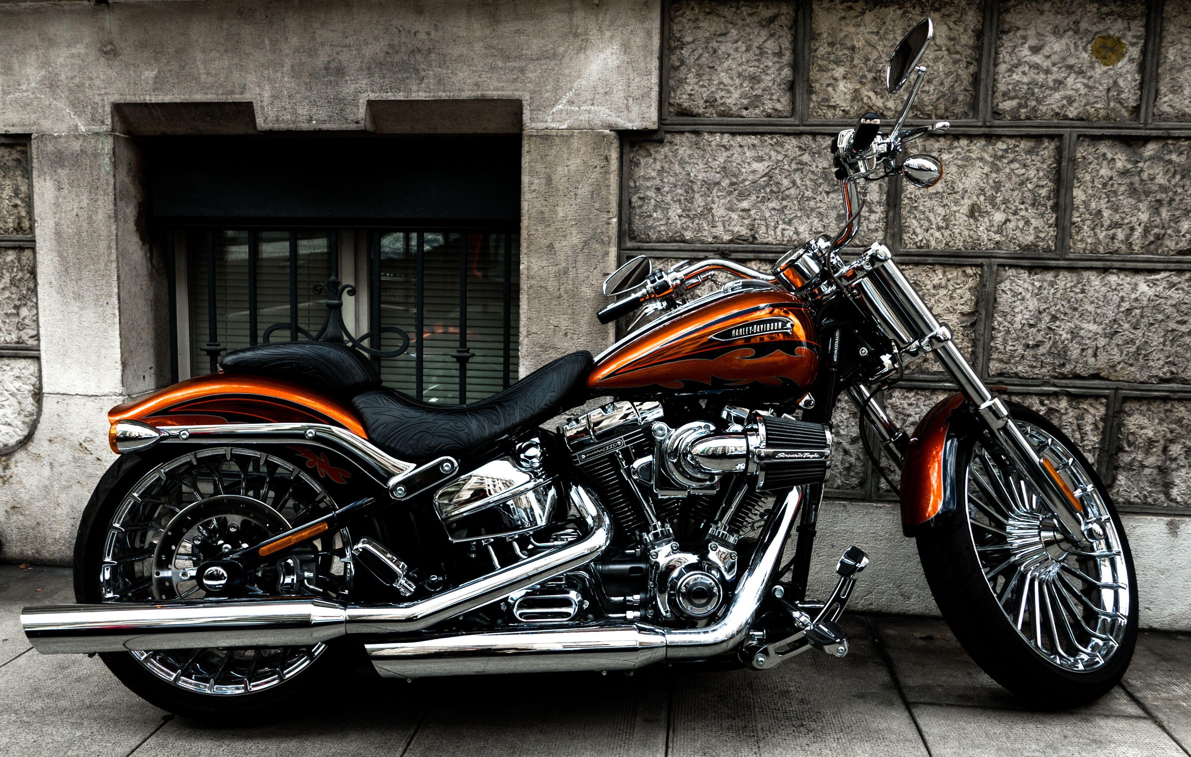 Harley Davidson Brown And Black Cruiser Motorcycle Graceful