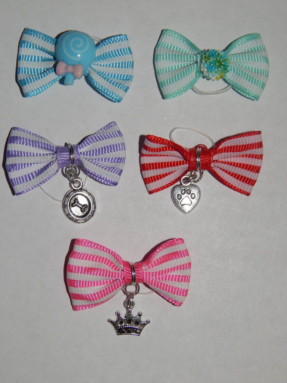 Popular Ribbon Bow Adorable Dog - 0176ca861e8f54cf510776e50bb81f34  Pictures_605782  .jpg