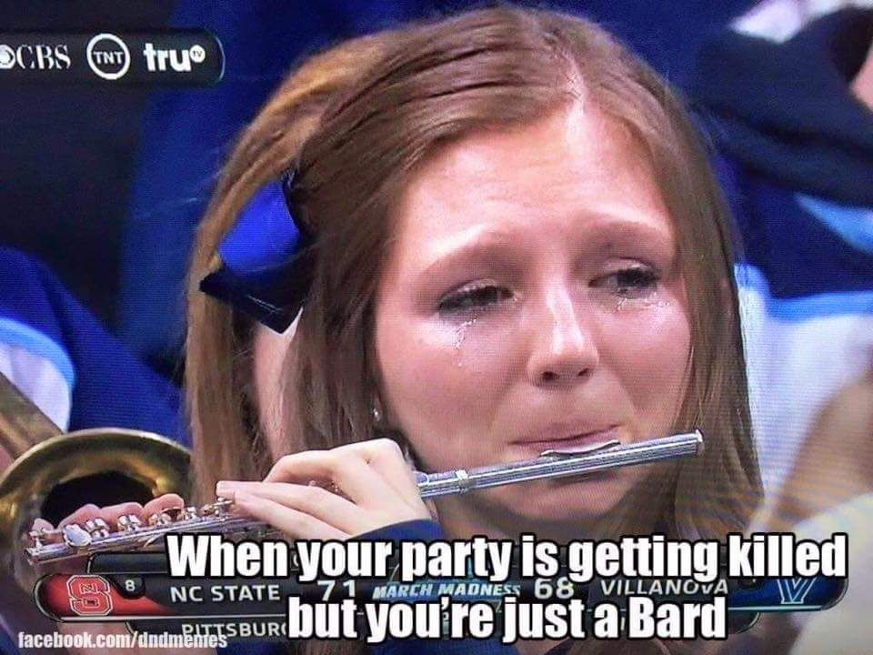 When Your Party Is Getting Killed But You Re Just A Bard Dragon Memes Dungeons And Dragons Memes Dungeons And Dragons