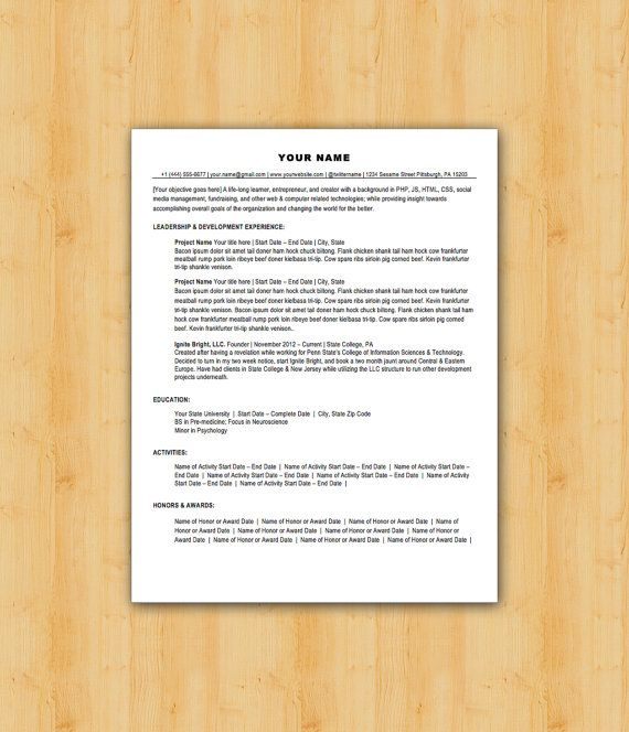 Easy To Edit Professional Resume Template  The Lancaster Design
