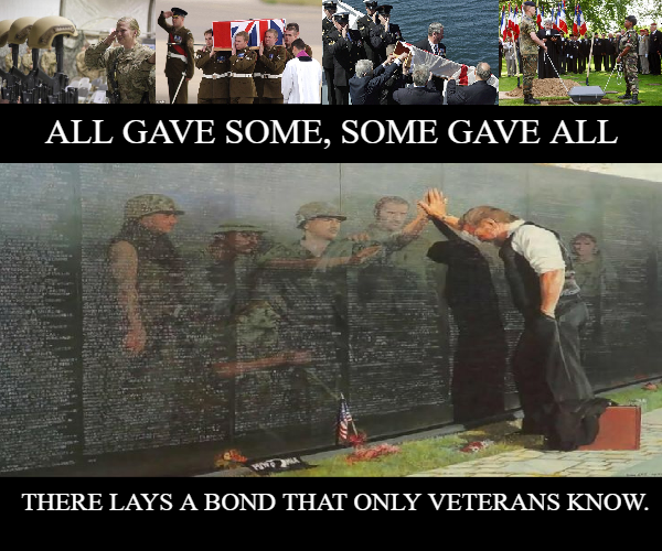 All gave some. Some gave all | Military memes, Some gave all, Veteran
