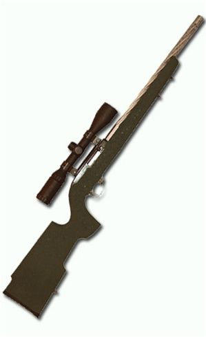 Boyds Tacticool stock | Firearms | Ruger 10/22, Firearms, Tools