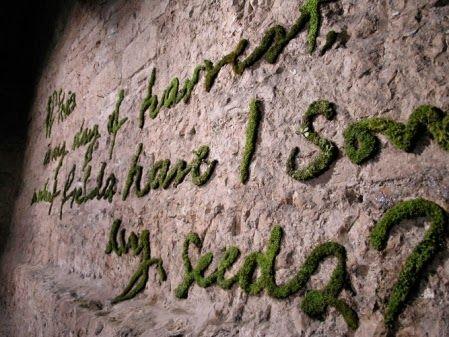 Moos-Grafitti - mit Moos Wände bemalen | Zuhause | Pinterest | Moos ...