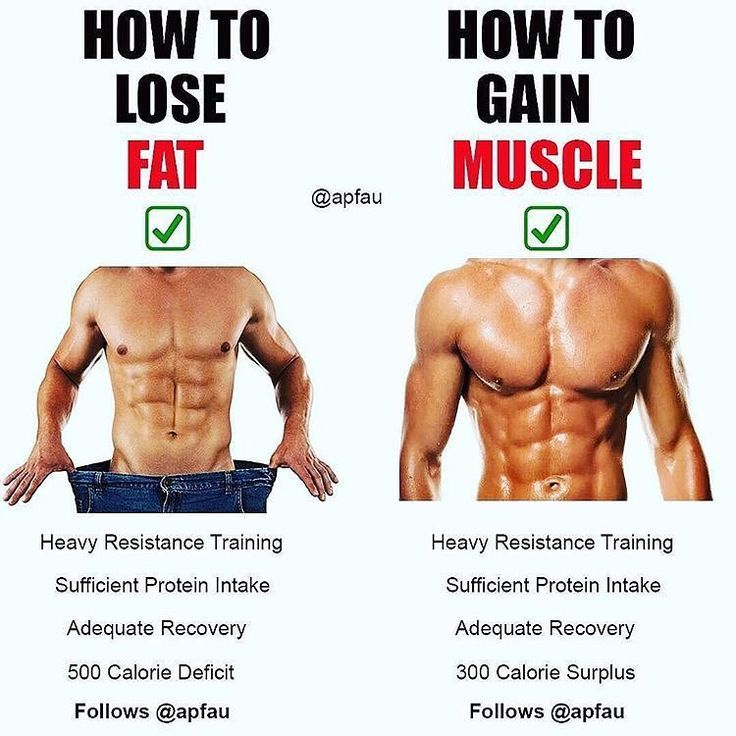 diet for building muscle and cutting fat
