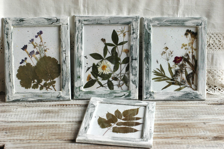 Картинки гербарий в стиле прованс