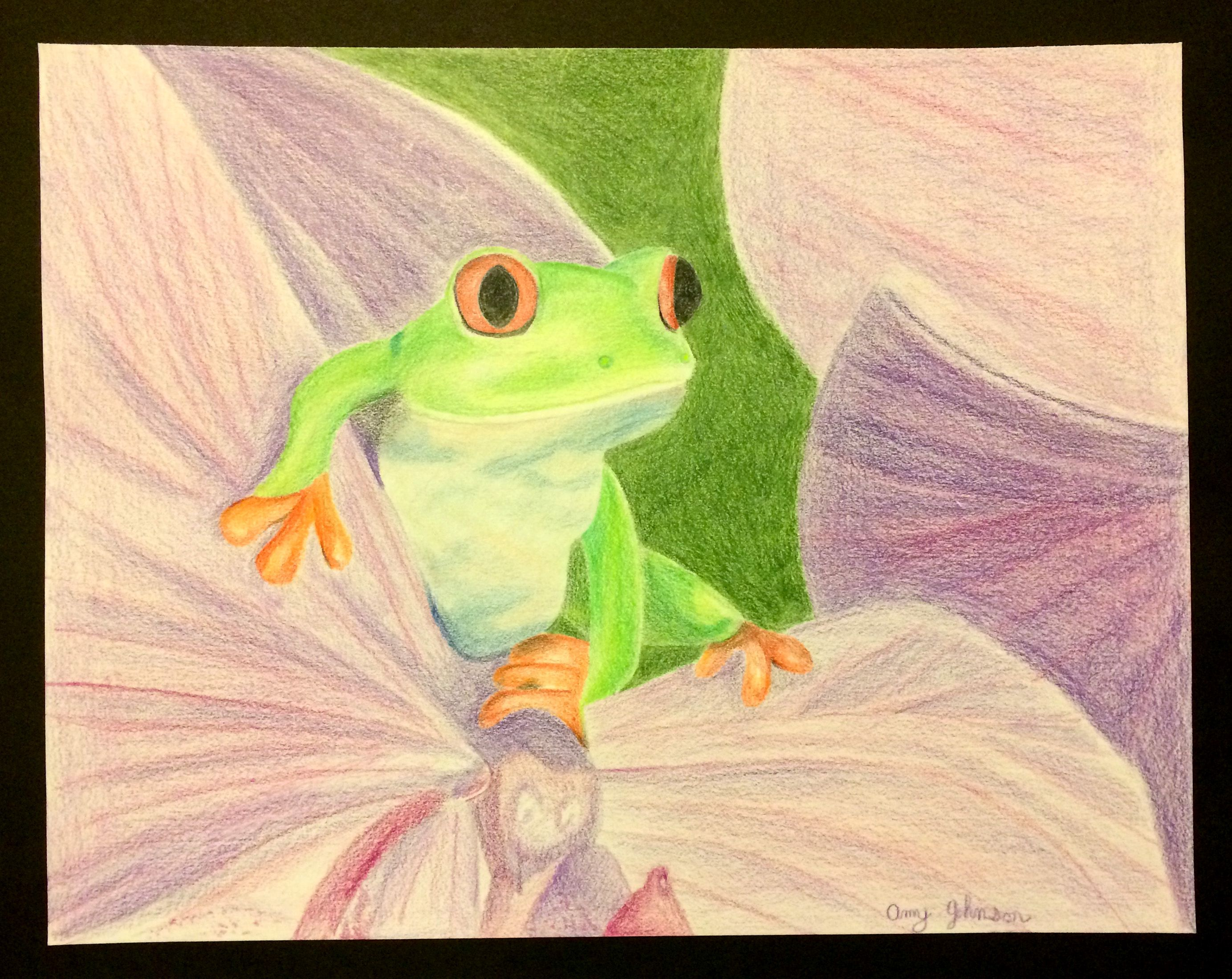 Tree Frog Colored Pencil Drawing | My Masterpieces | Pinterest