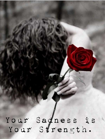 red rose positive sad quote for you Cute Love Quotes for