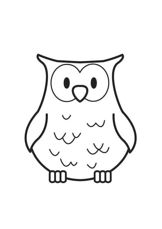 Coloriage Hibou Img 17845 Animaux Forêt Coloriage Hibou