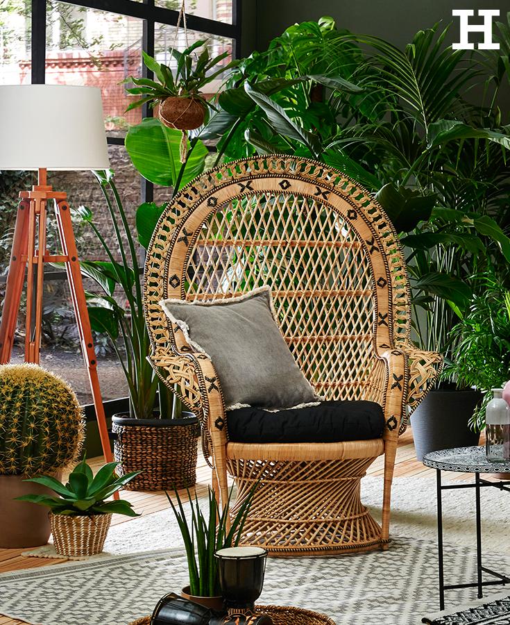 rattansessel holzfarben victoria ethno wohnen pinterest rattan victoria und sessel. Black Bedroom Furniture Sets. Home Design Ideas