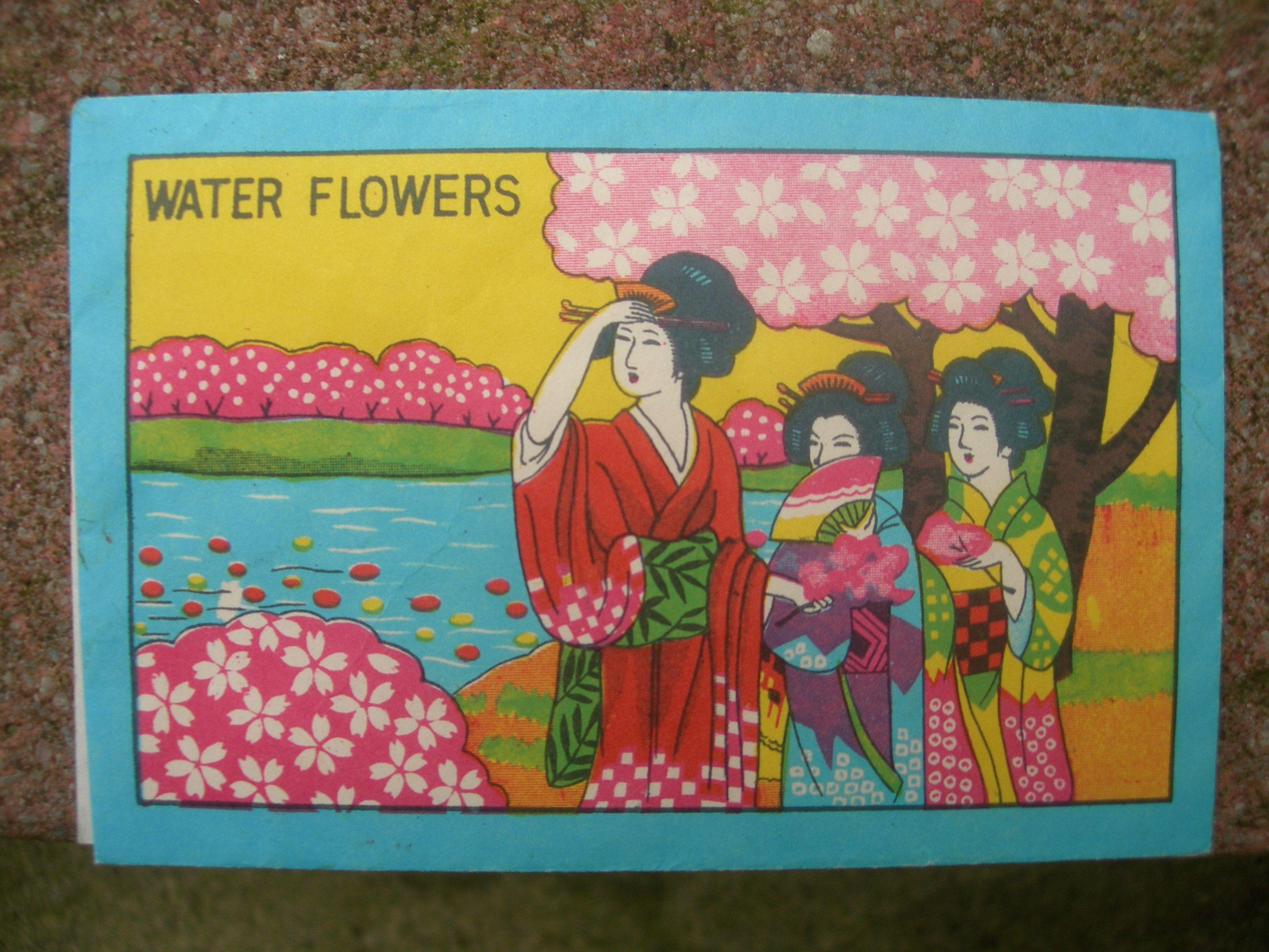 Japanese Water Flowers Each Paper Flower Unfurls When You Put It In