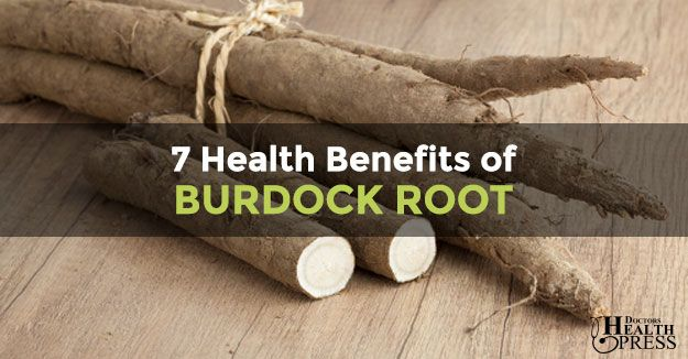 What are the Health Benefits of Burdock Root & Nutrition ...