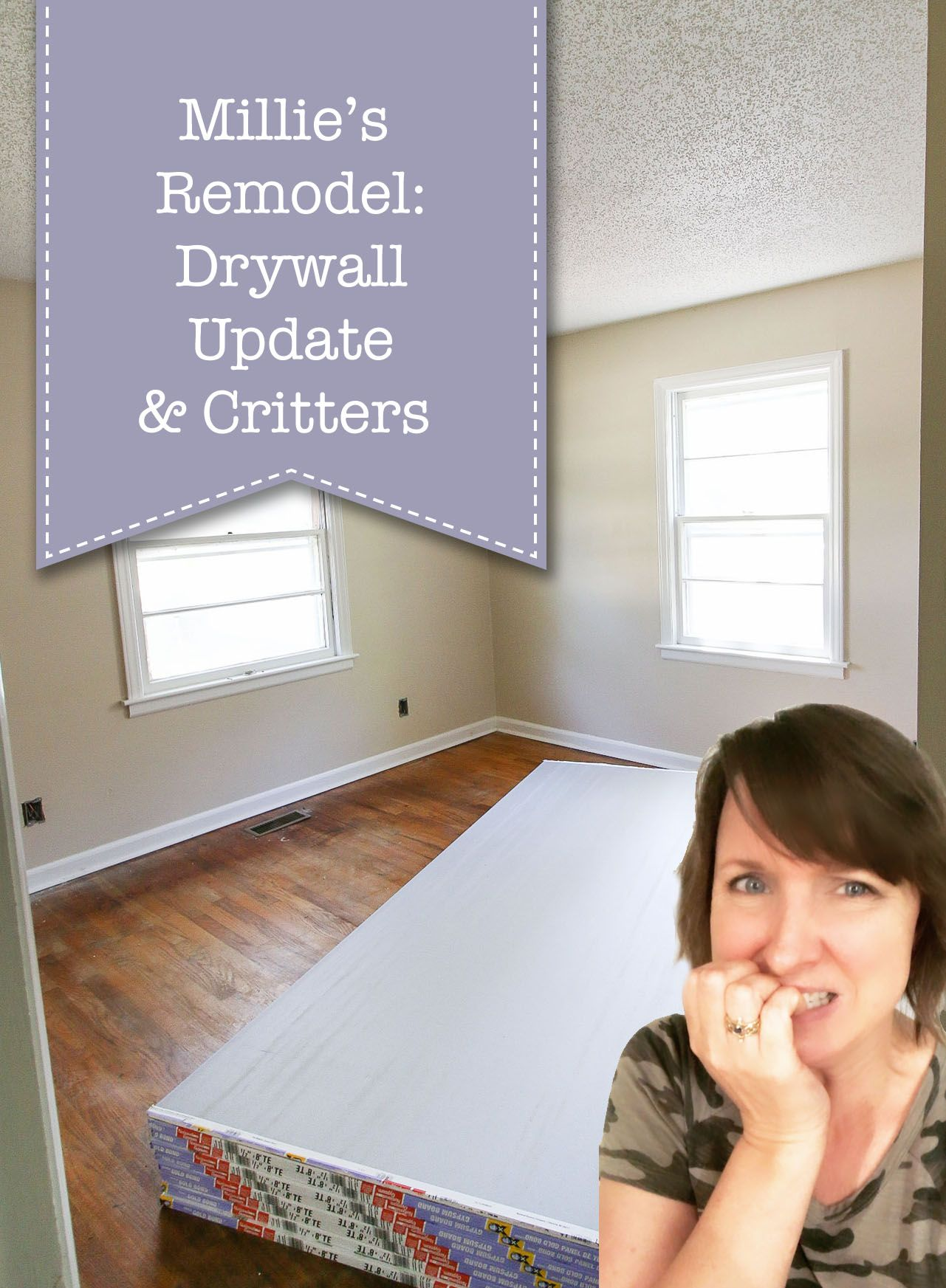 Millie S Remodel Drywall Update Critters In 2020 Drywall Installation Pocket Door Installation Remodel