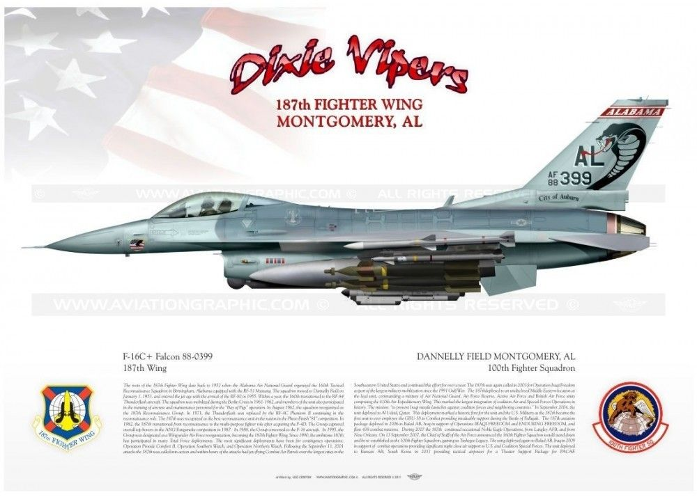Alabama vipers  | Aircraft carrier & Misc  items | Fighter